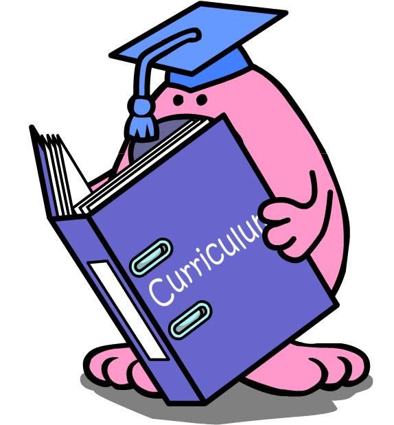 pinkman curriculum