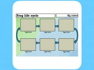 Life Cycle of a frog worksheet 6